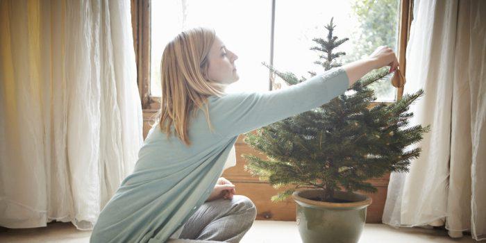 FEN-ŠUI NOSLĒPUMI. Kur vislabāk novietot Ziemassvētku eglīti?!