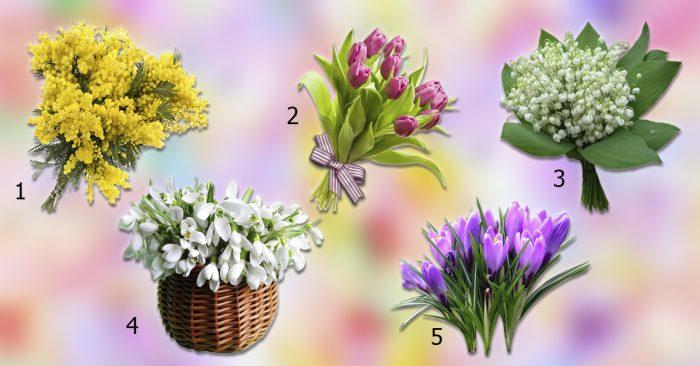 Tests. Kādi patīkami notikumi jūs gaida šajā pavasarī?!