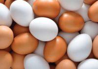 Kā izvārīt ideālas olas – vajag pievienot tikai šo sastāvdaļu!