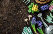 Lieliski padomi dārzniekiem, kas palīdzēs augu kopšanā