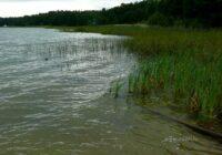 Būsi pārsteigts, ko kāda sieviete iemūžinājusi Stropu ezerā