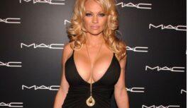 Kā patiesībā izskatās krūtis pēc silikona implantu izņemšanas