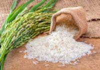Lūk, kas notiks, ja ieliksiet augļus rīsos.  Pārsteidzoši rīsu pielietošanas veidi